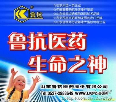 """中国智库""""创新决胜未来代言人""""谈为山东和济宁赢得创新铜牌奖 ... ..._图1-12"""